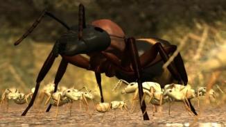 Ant_Simulator